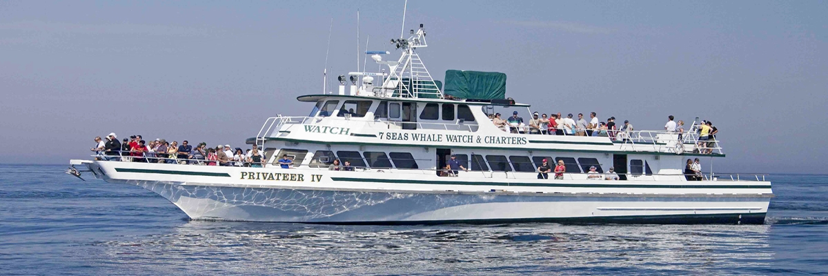 Whale Watch Boat Privateer iV Gloucester Ma