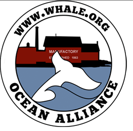 Ocean Alliance Logo