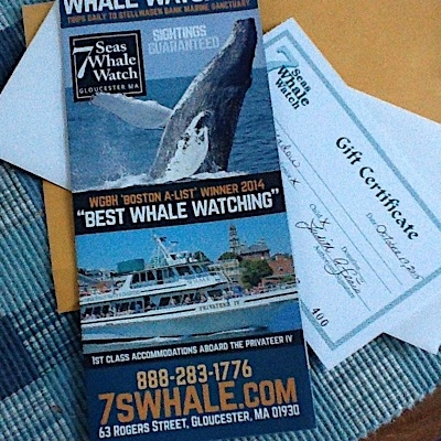 Whale Watch Gift Certificate