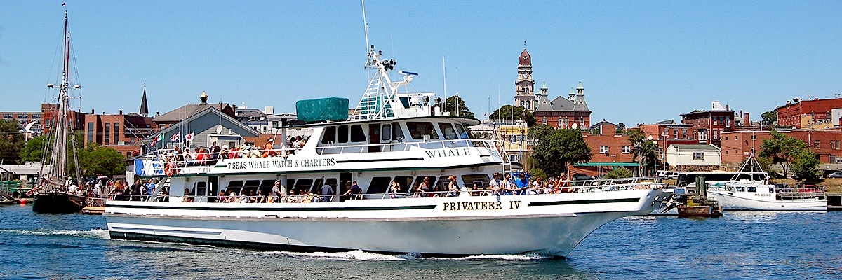 Privateer IV